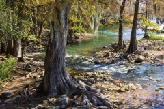 Gruene River